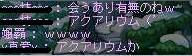 GW-00000908.jpg