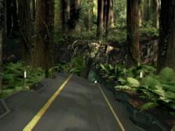 KITI-Forester0822.jpg