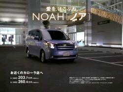 NOR-Noah0805.jpg