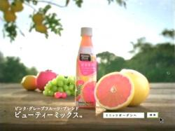 Okada-Minitsmade0805.jpg