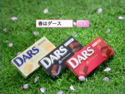 SHI-DARS0815.jpg