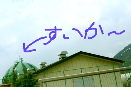 20080528005.jpg