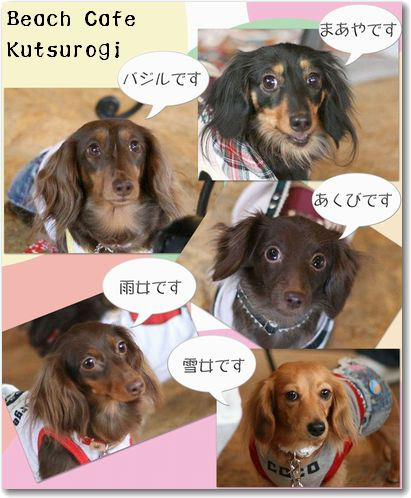 kissD-0320-1.jpg