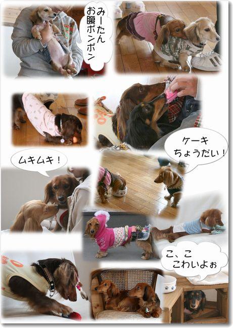 kissD0413-10.jpg