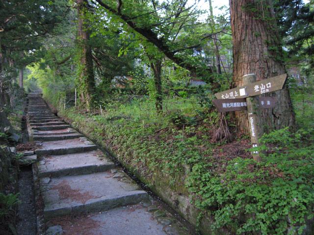 夏山登山道