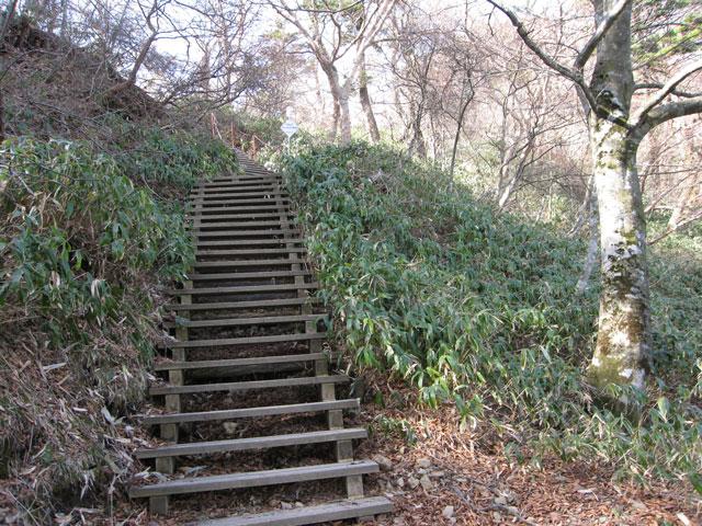 整備された階段