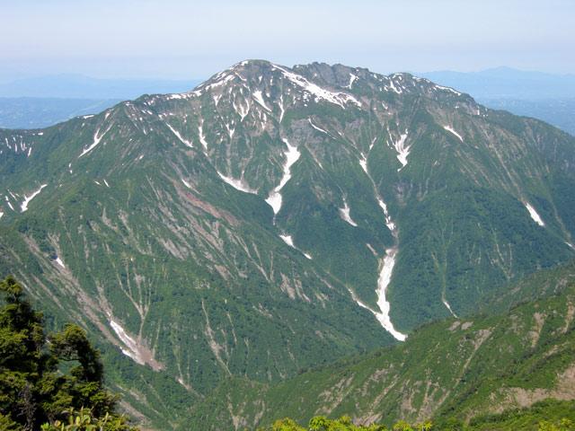 大きなハ海山