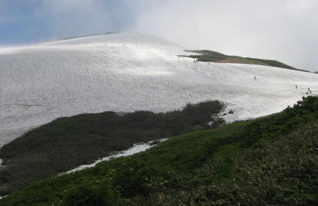 姥ヶ岳のゲレンデ