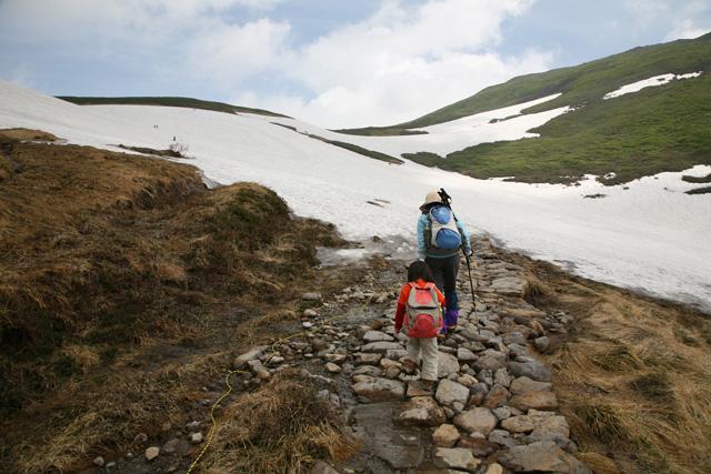再び雪渓か
