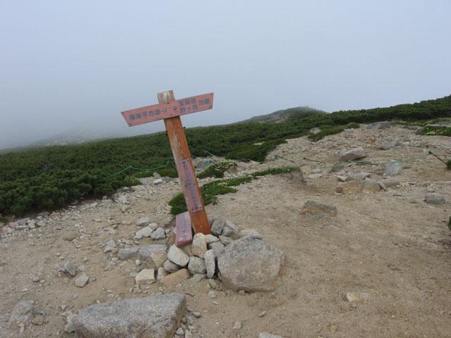 三ノ沢岳の分岐