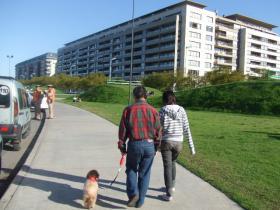 歩け~歩け散歩開始