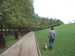散歩の光景