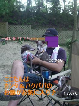 CIMG0270.jpg