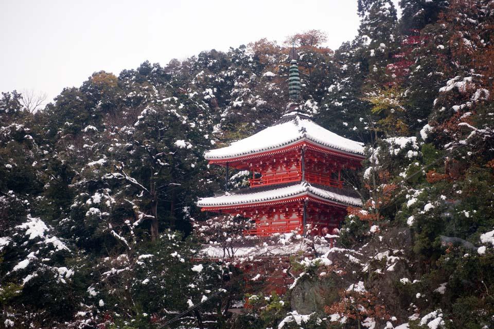 yun_3286.jpg