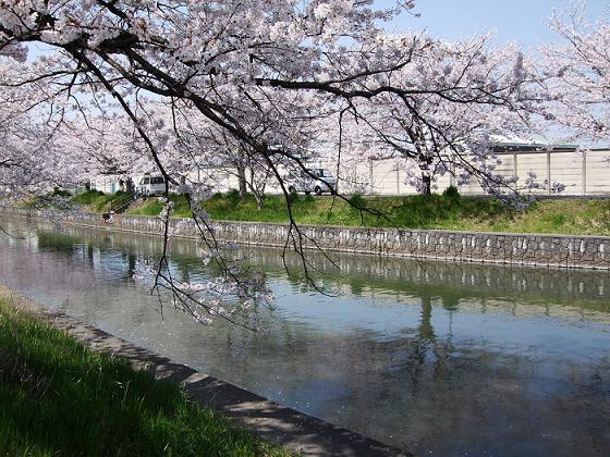 2008_0404takotako0021.jpg
