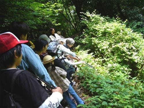 08-1⑦高尾山写真P1000215