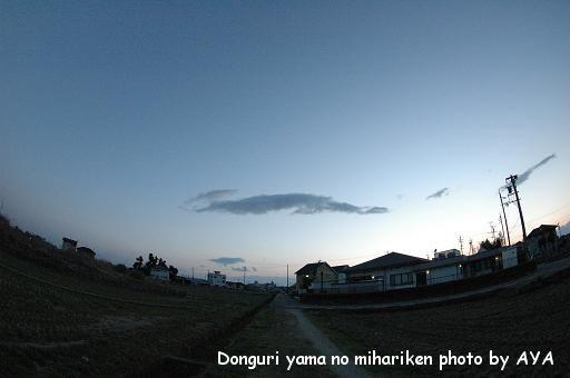 DSC_6513.jpg