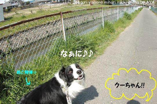 DSC_6541.jpg