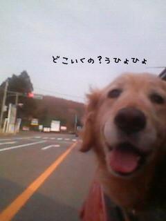 200803231617001.jpg