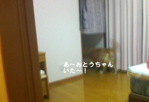 200806032111001.jpg