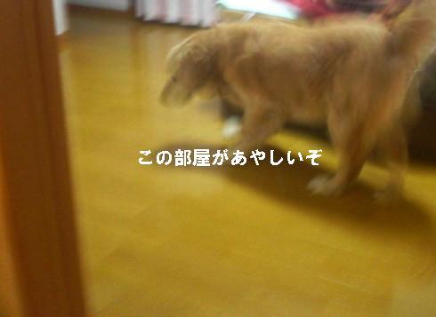 200806032112000.jpg