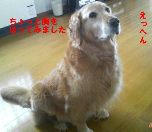 200806110746000.jpg