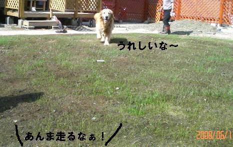 200806171502001.jpg
