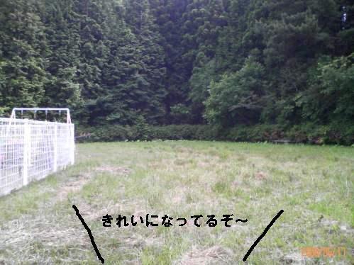 200806171539000.jpg