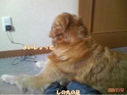 200807021504001.jpg
