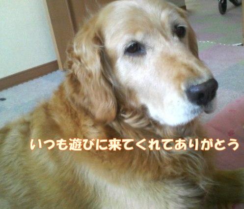 200807021511000.jpg