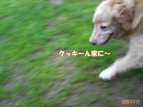 200807231727001.jpg