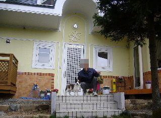 クローバーリーフ