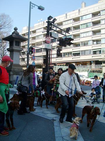 東京パレード3月16日 047