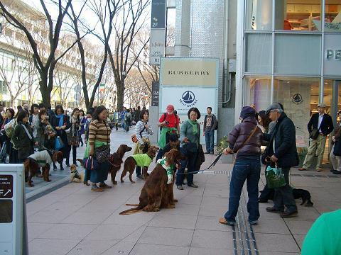 東京パレード3月16日 013