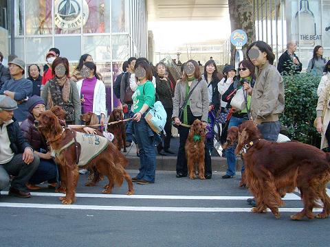 東京パレード3月16日 021