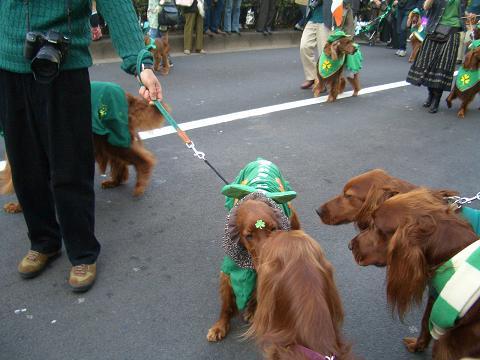 東京パレード3月16日 029