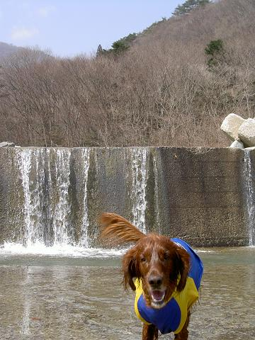 3月18日川遊び 003