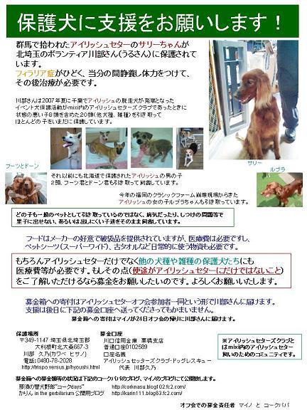 募金チラシWEB用携帯番号ナシ