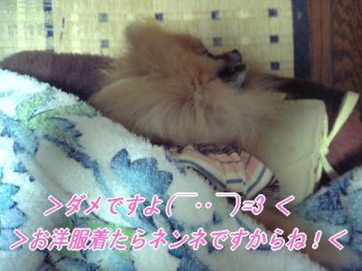 wanpi03_convert_.jpg