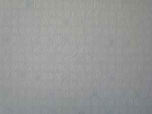NEC_0532_convert_20080524160724.jpg