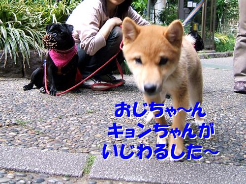 080518_9.jpg