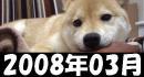 柴犬ズン200803