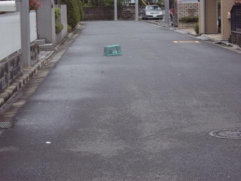 柴犬ズン画像041901