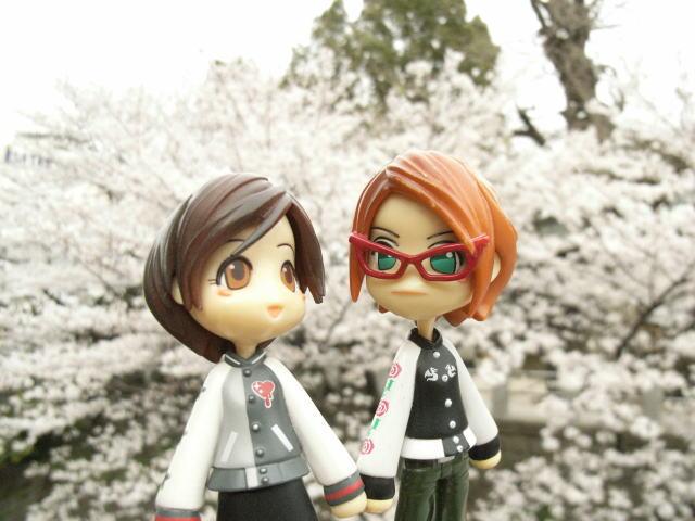 櫻花とPinky:st.08-001