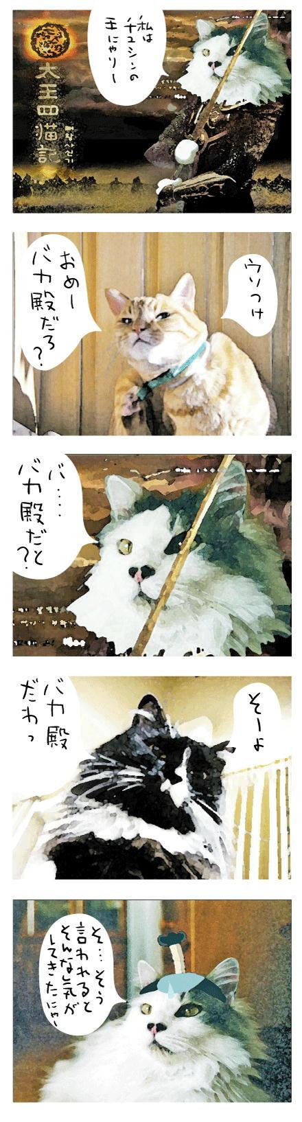太王四猫記2