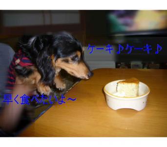ライルケーキ