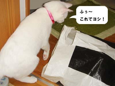 cat270