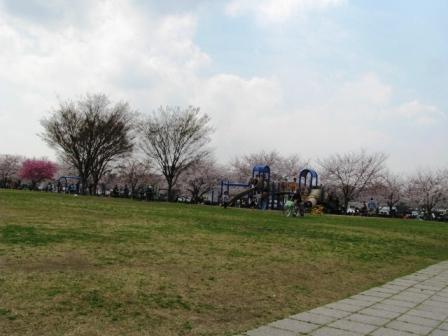 2008.3.28
