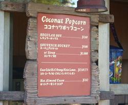 ココナッツポップコーン