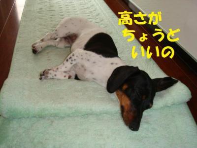 マットde枕